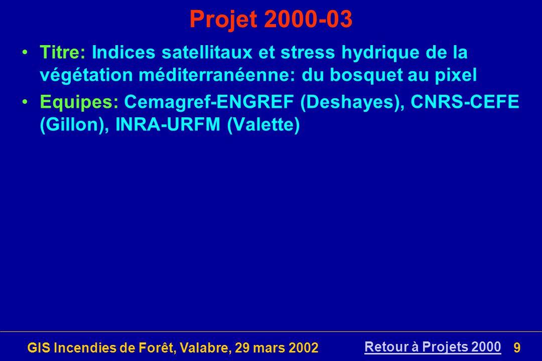 GIS Incendies de Forêt, Valabre, 29 mars 2002