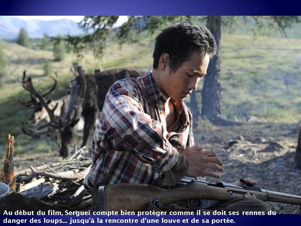 Au début du film, Sergueï compte bien protéger comme il se doit ses rennes du danger des loups...