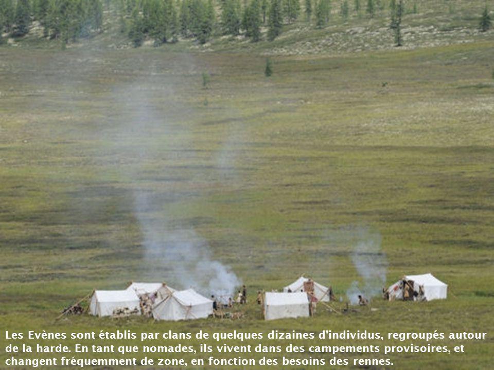 Les Evènes sont établis par clans de quelques dizaines d individus, regroupés autour de la harde.