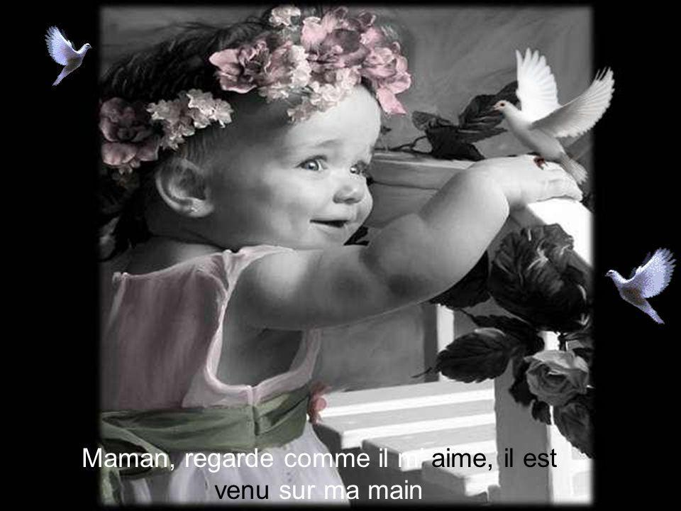Maman, regarde comme il m' aime, il est venu sur ma main