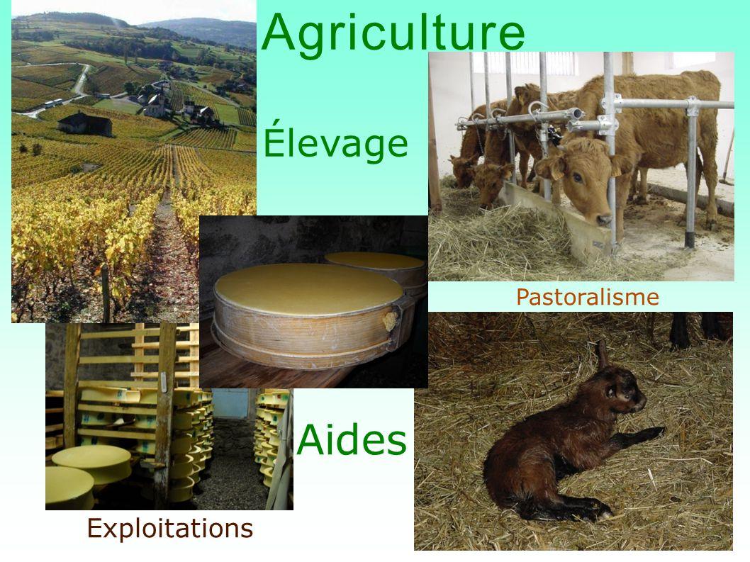 Agriculture Élevage Pastoralisme Aides Exploitations
