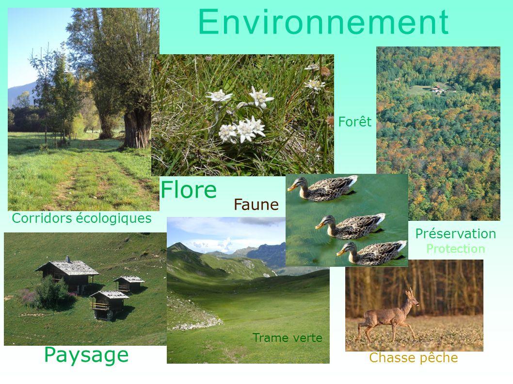 Environnement Flore Paysage Faune Forêt Corridors écologiques