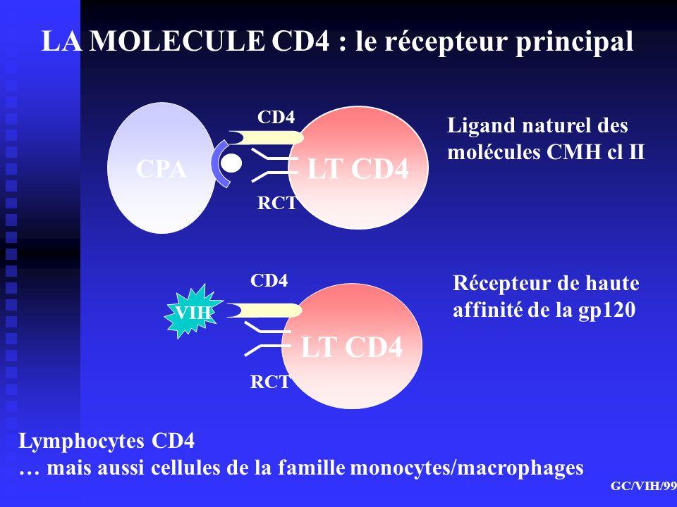 LA MOLECULE CD4 : le récepteur principal