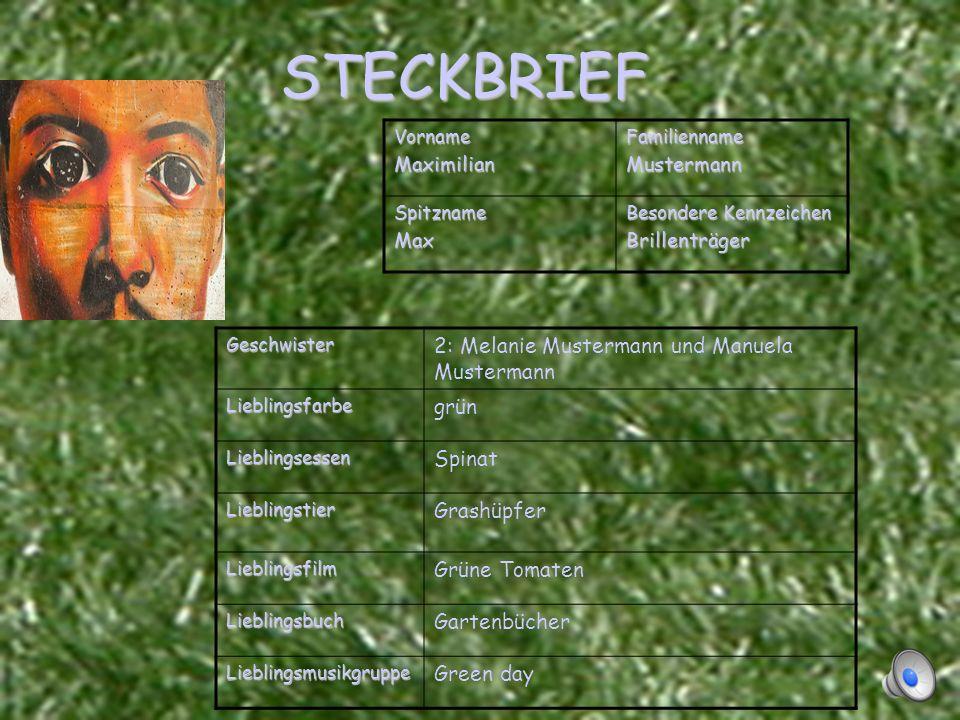 STECKBRIEF 2: Melanie Mustermann und Manuela Mustermann grün Spinat