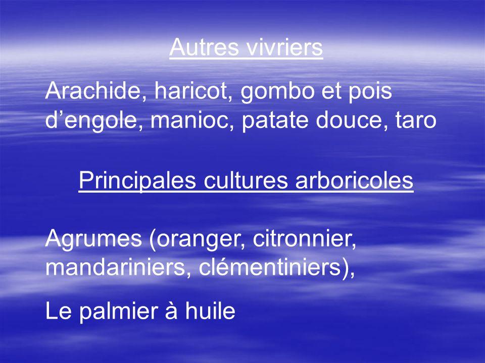 Principales cultures arboricoles