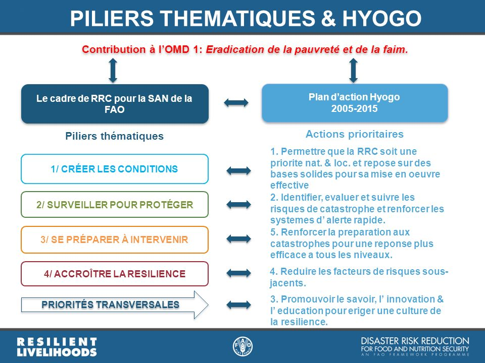 PILIERS THEMATIQUES & HYOGO