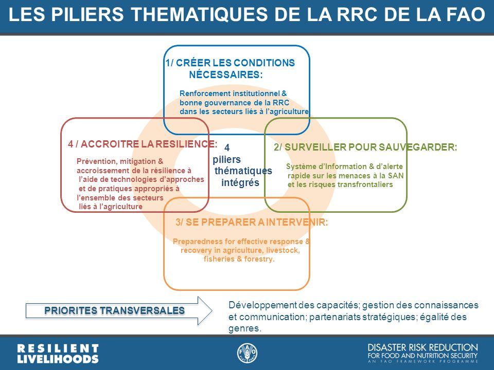 LES PILIERS THEMATIQUES DE LA RRC DE LA FAO PRIORITES TRANSVERSALES