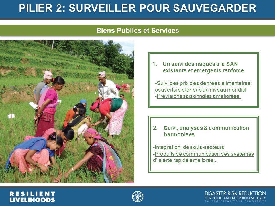 PILIER 2: SURVEILLER POUR SAUVEGARDER Biens Publics et Services