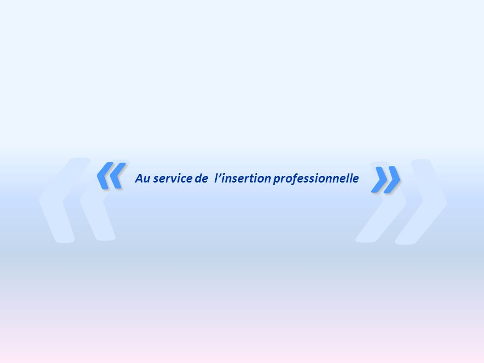 Au service de l'insertion professionnelle