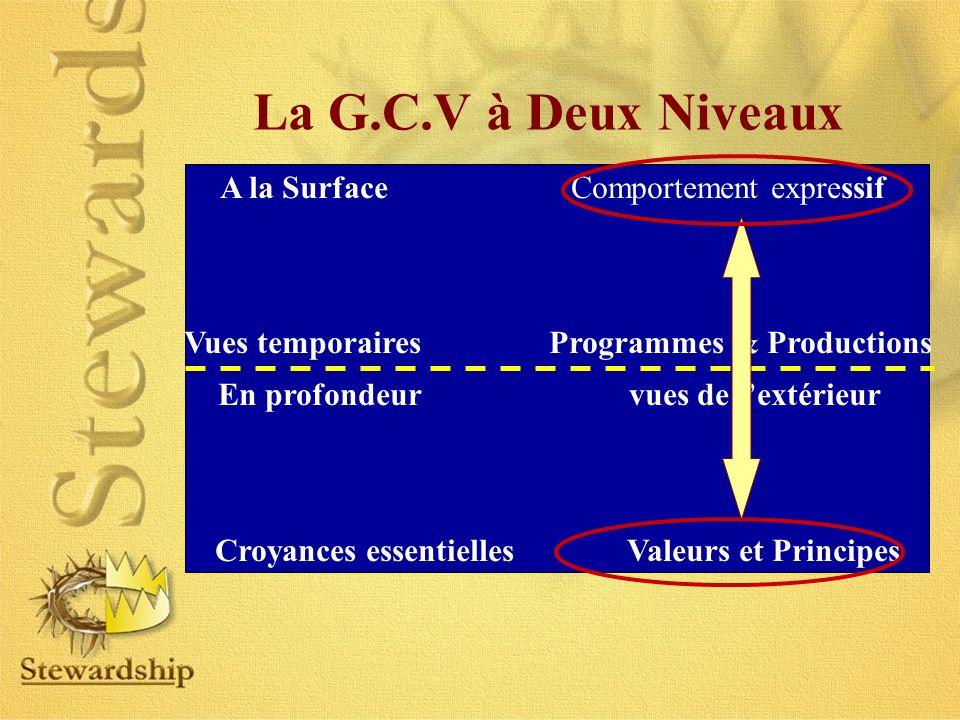 La G.C.V à Deux Niveaux A la Surface Comportement expressif