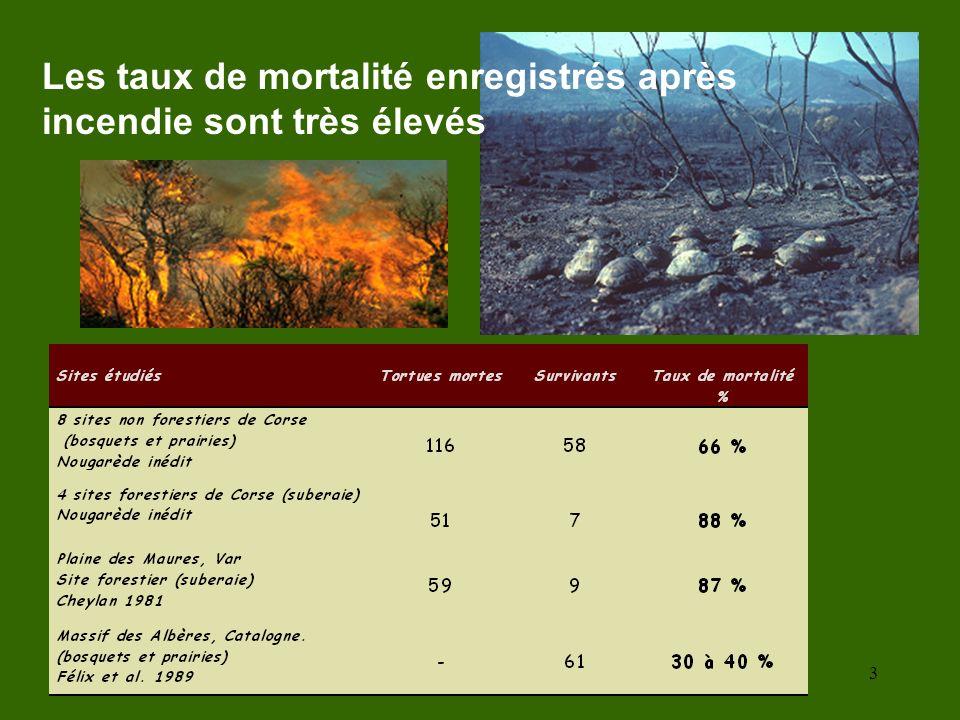 Les taux de mortalité enregistrés après incendie sont très élevés