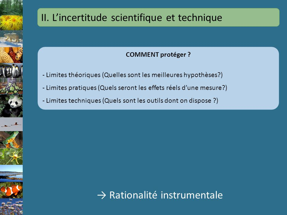 II. L'incertitude scientifique et technique