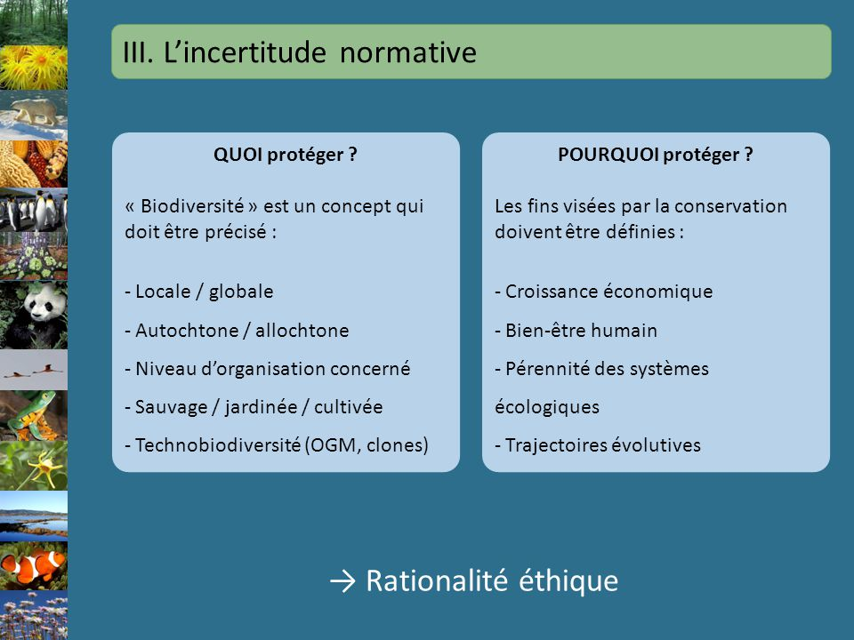 III. L'incertitude normative