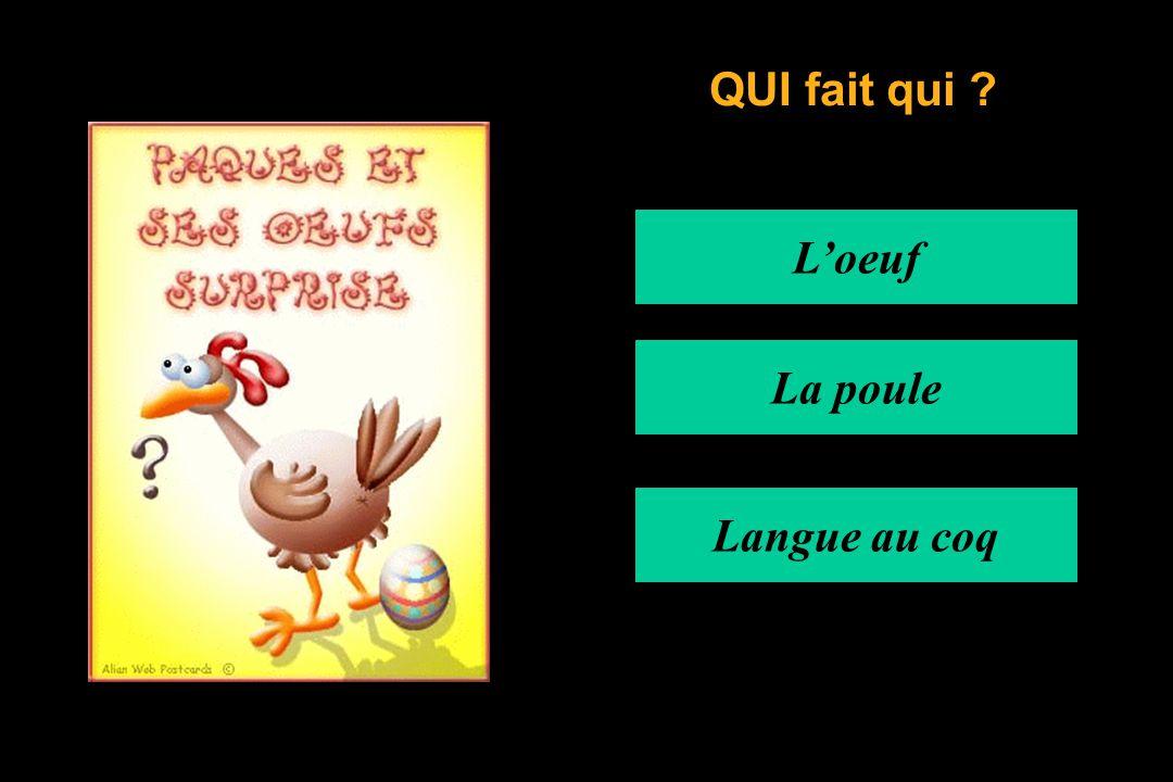 L'oeuf La poule Langue au coq