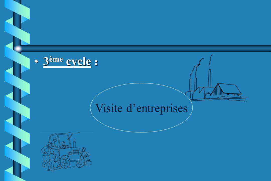 3ème cycle : Visite d'entreprises