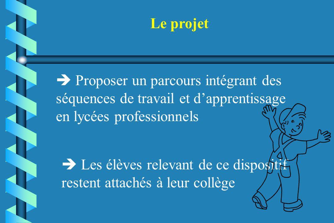 Le projet  Proposer un parcours intégrant des séquences de travail et d'apprentissage en lycées professionnels.