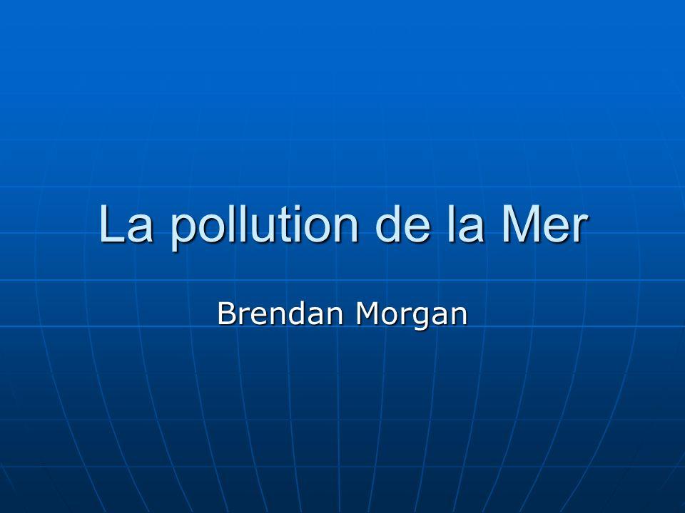 La pollution de la Mer Brendan Morgan