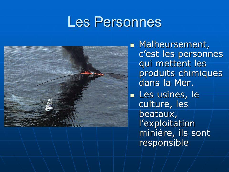 Les Personnes Malheursement, c'est les personnes qui mettent les produits chimiques dans la Mer.