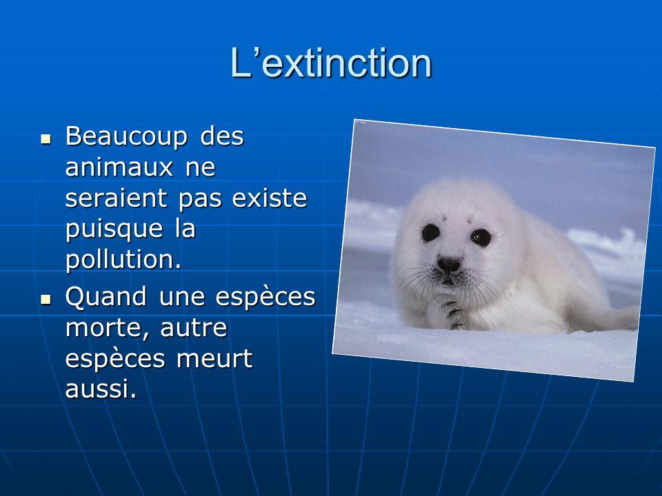 L'extinction Beaucoup des animaux ne seraient pas existe puisque la pollution.