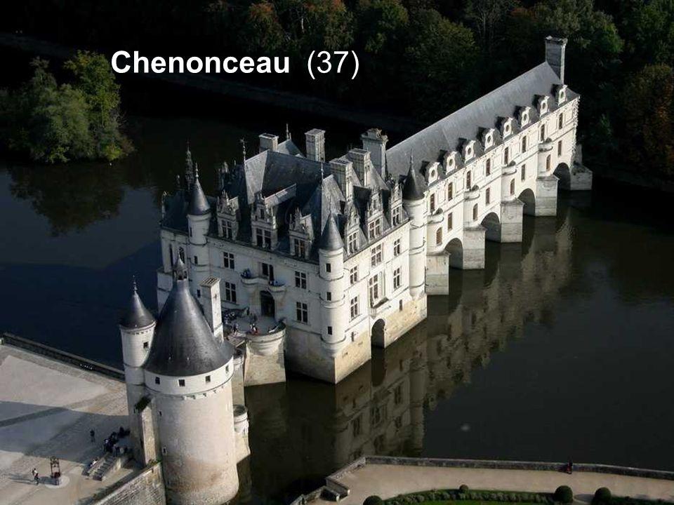 Chenonceau (37)