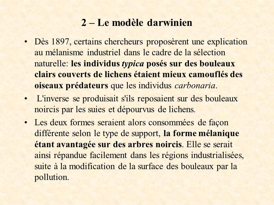 2 – Le modèle darwinien