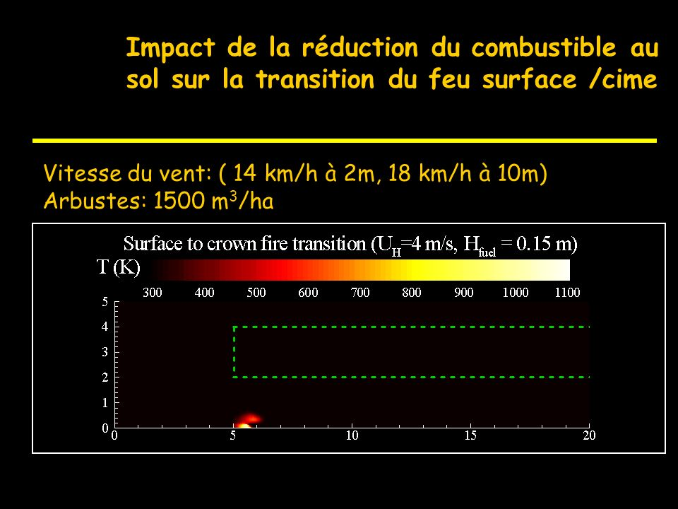 Impact de la réduction du combustible au sol sur la transition du feu surface /cime