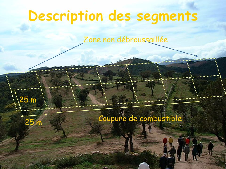 Description des segments