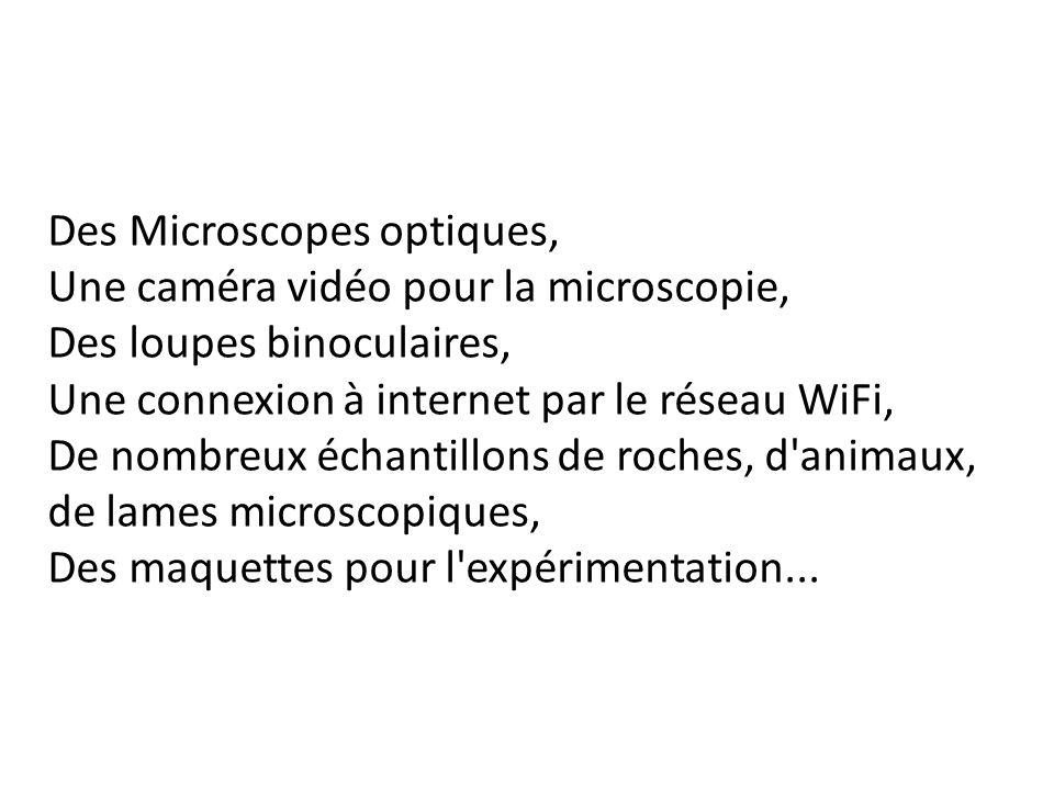 Des Microscopes optiques,