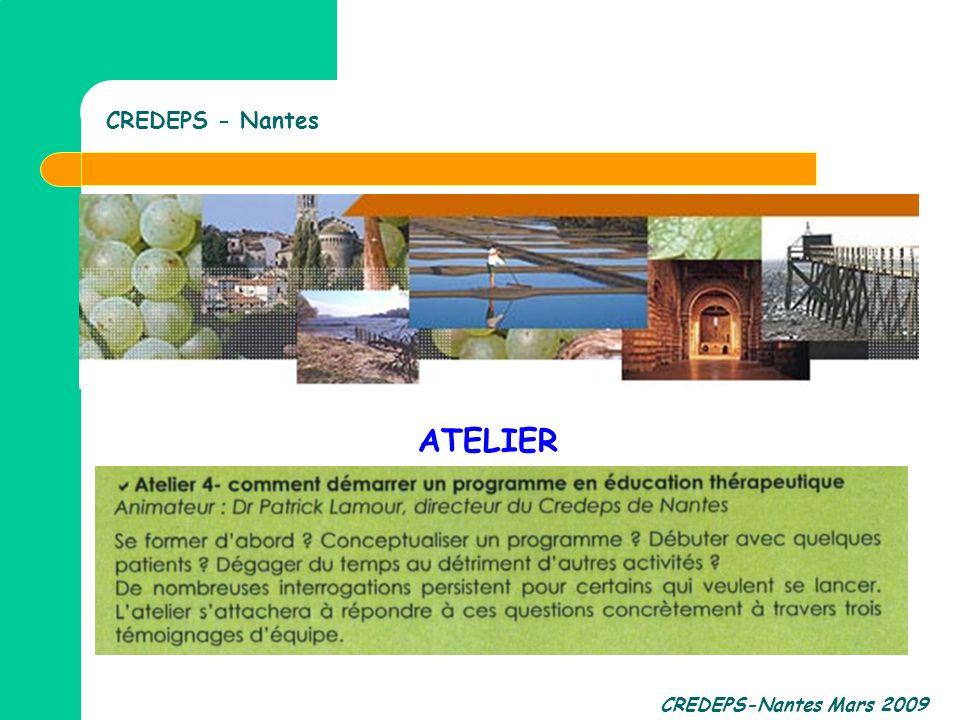 CREDEPS - Nantes ATELIER CREDEPS-Nantes Mars 2009