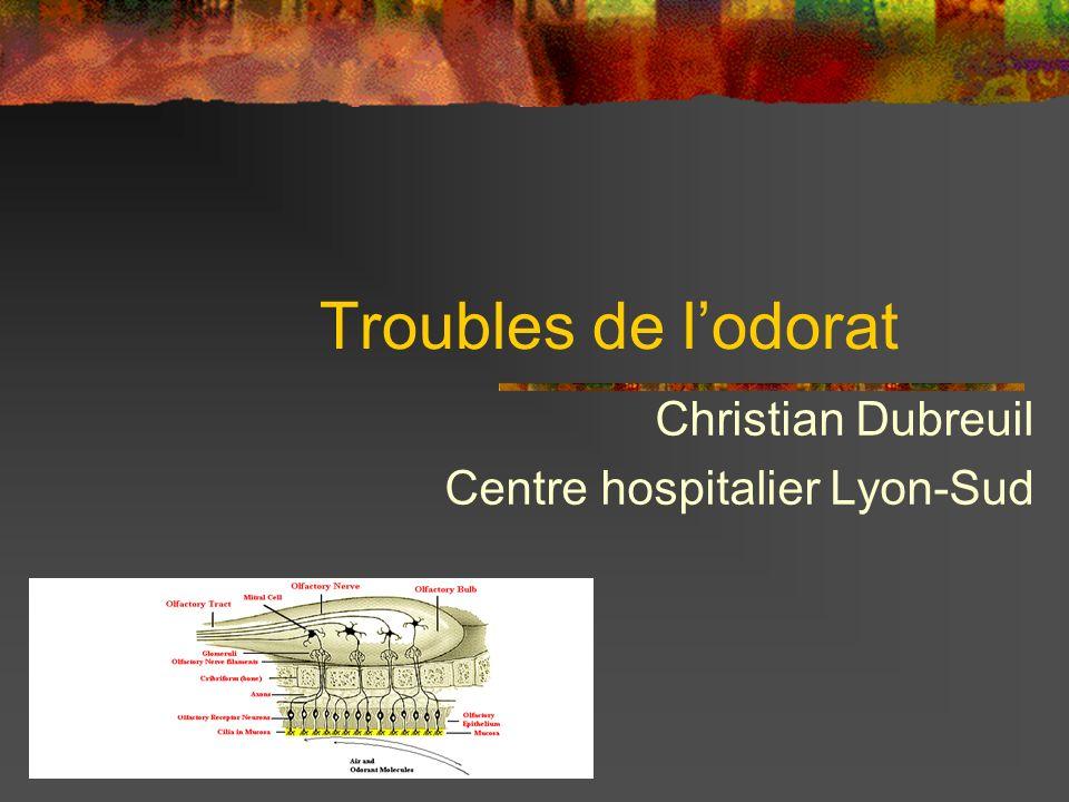 Christian Dubreuil Centre hospitalier Lyon-Sud