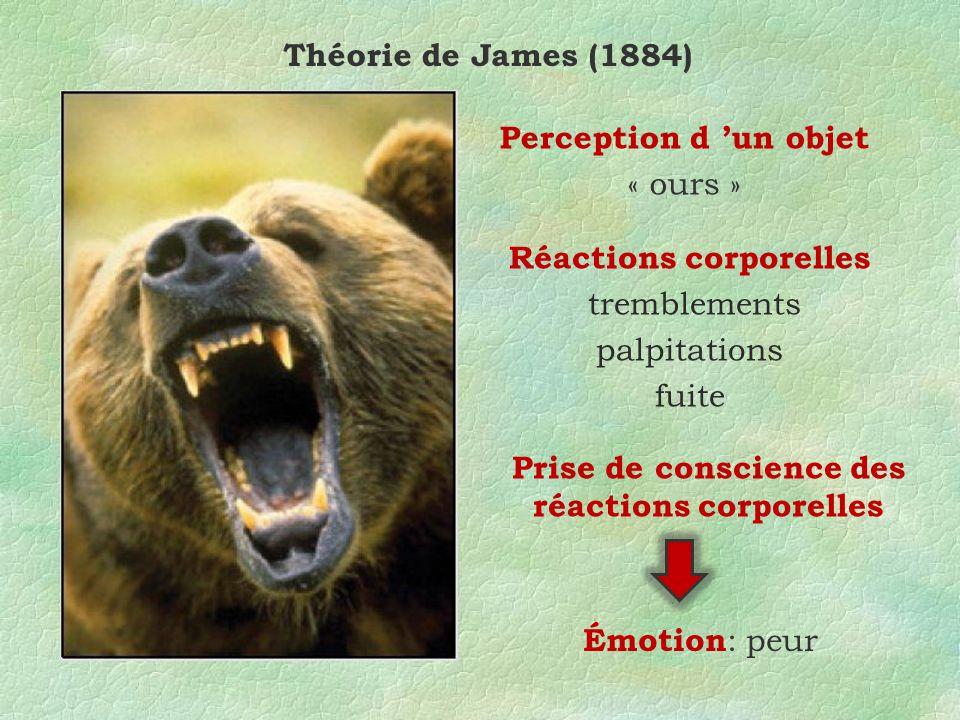Réactions corporelles Prise de conscience des réactions corporelles