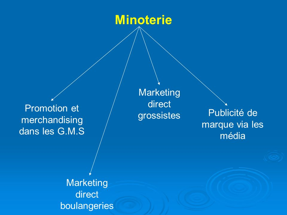 Minoterie Marketing direct grossistes