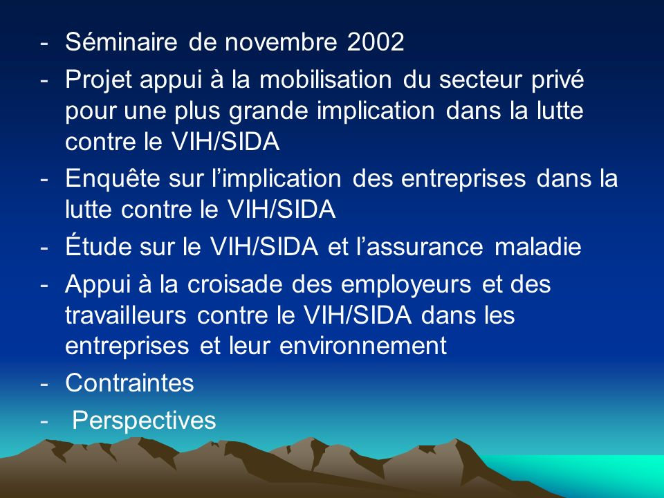 Séminaire de novembre 2002 Projet appui à la mobilisation du secteur privé pour une plus grande implication dans la lutte contre le VIH/SIDA.
