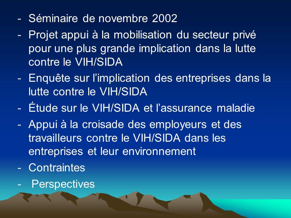 Séminaire de novembre 2002Projet appui à la mobilisation du secteur privé pour une plus grande implication dans la lutte contre le VIH/SIDA.
