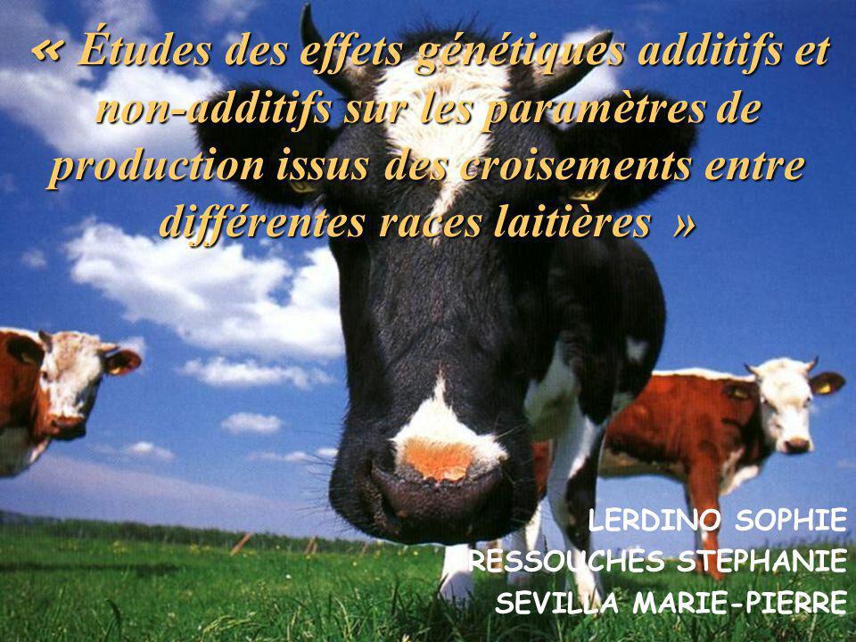 « Études des effets génétiques additifs et non-additifs sur les paramètres de production issus des croisements entre différentes races laitières »