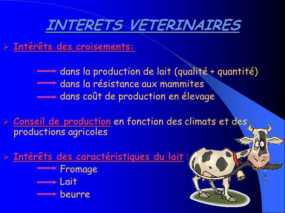INTERETS VETERINAIRES