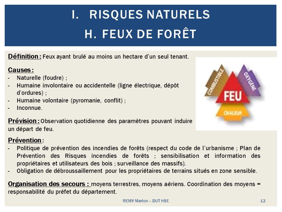 Risques naturels Feux de forêt