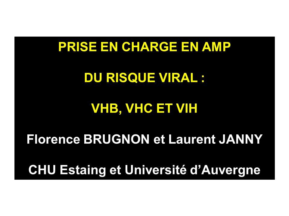 PRISE EN CHARGE EN AMP DU RISQUE VIRAL : VHB, VHC ET VIH Florence BRUGNON et Laurent JANNY CHU Estaing et Université d'Auvergne