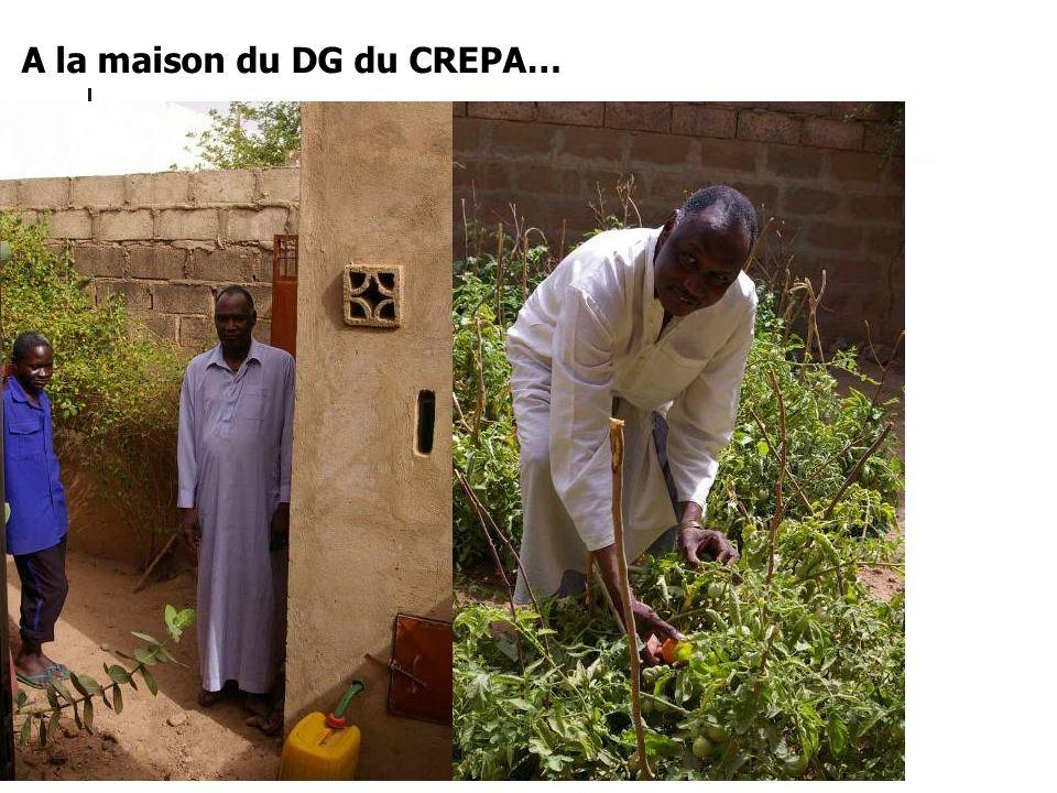 A la maison du DG du CREPA…