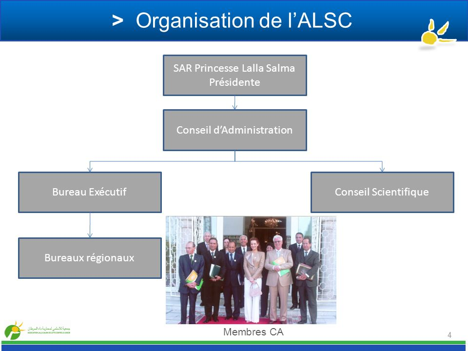 > Organisation de l'ALSC