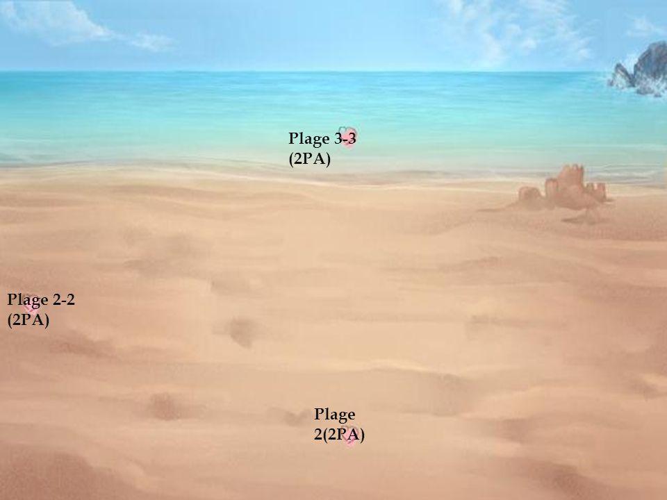 Plage 3 Plage 3-3 (2PA) Plage 2-2 (2PA) Plage 2(2PA)