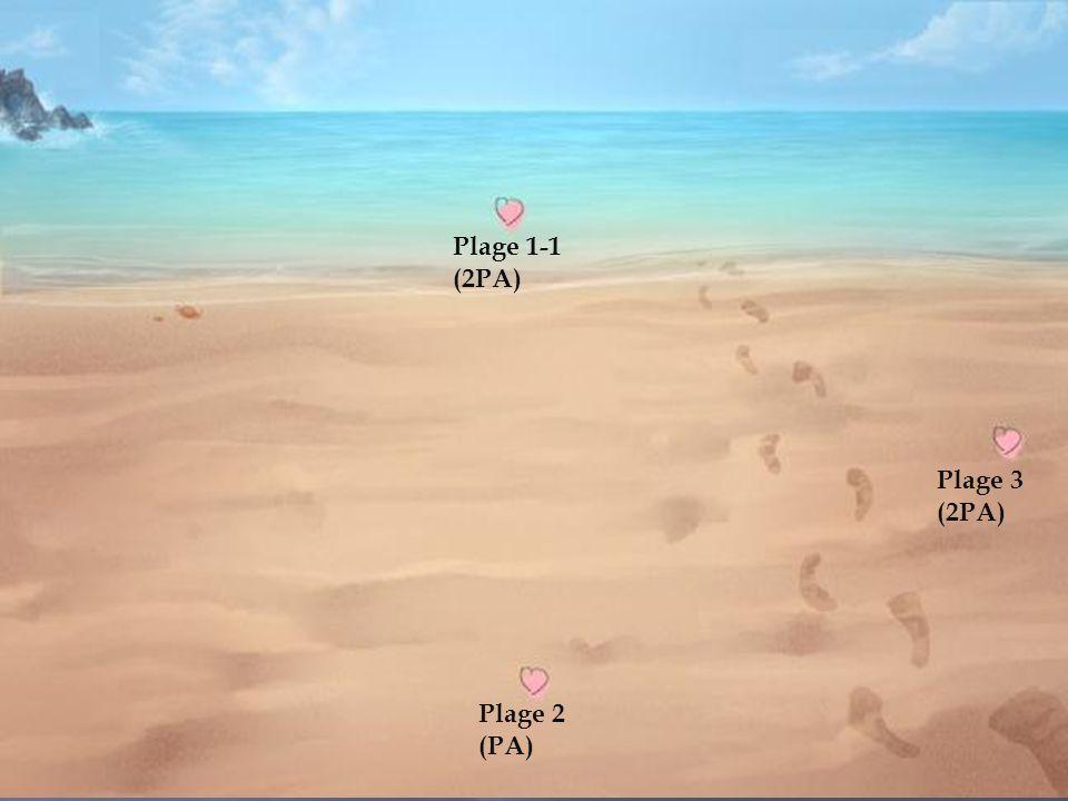 Plage1 Plage 1-1 (2PA) Plage 3 (2PA) Plage 2 (PA)