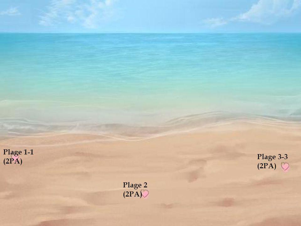 Plage 2-2 Plage 1-1 (2PA) Plage 3-3 (2PA) Plage 2 (2PA)