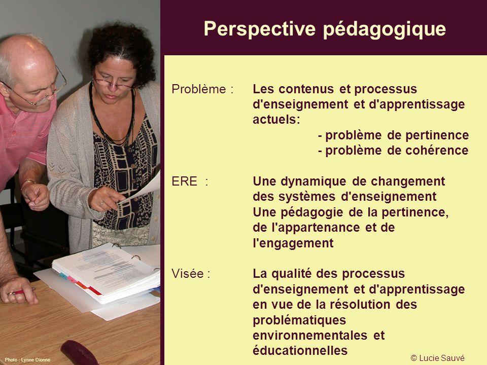 Perspective pédagogique