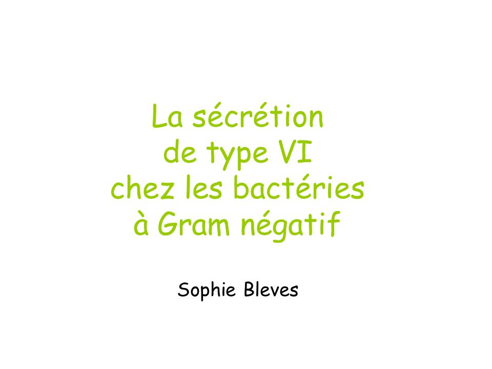 La sécrétion de type VI chez les bactéries à Gram négatif