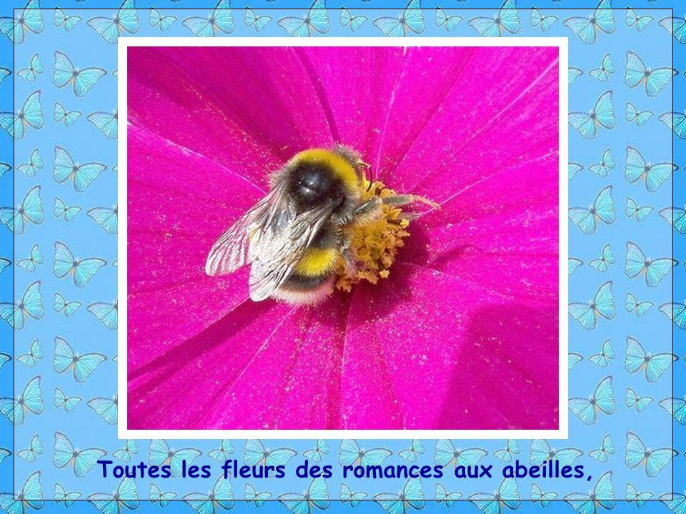 Toutes les fleurs des romances aux abeilles,