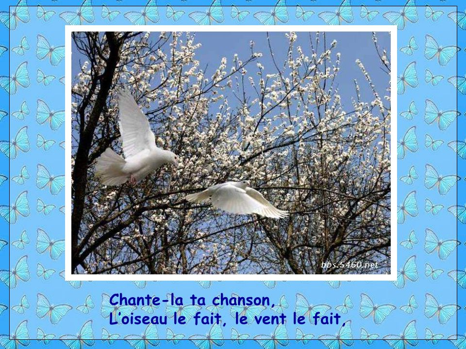Chante-la ta chanson, L'oiseau le fait, le vent le fait,
