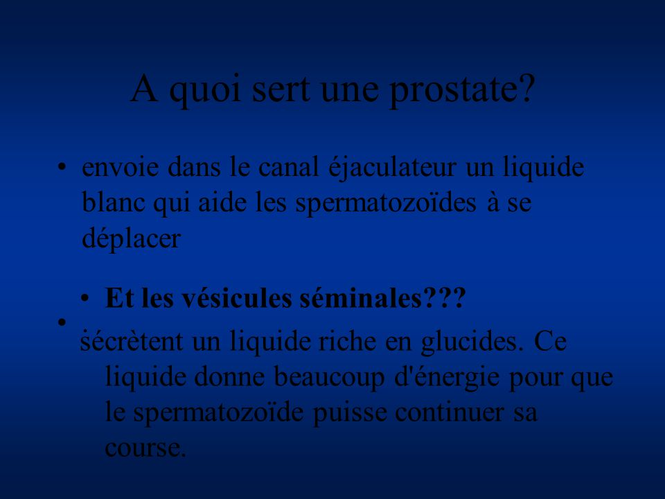 A quoi sert une prostate
