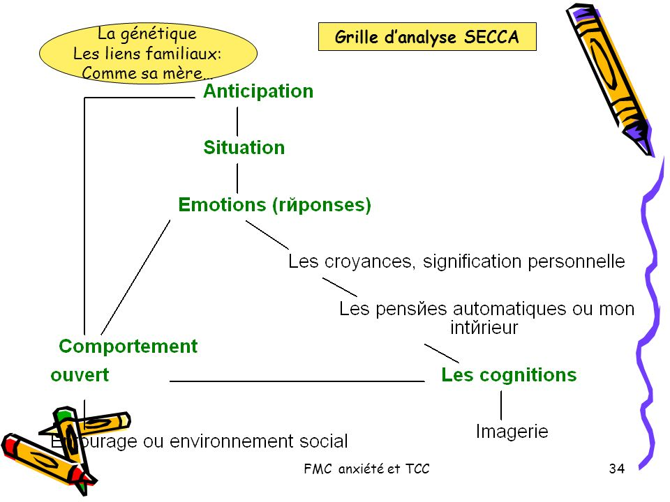 Grille d'analyse SECCA