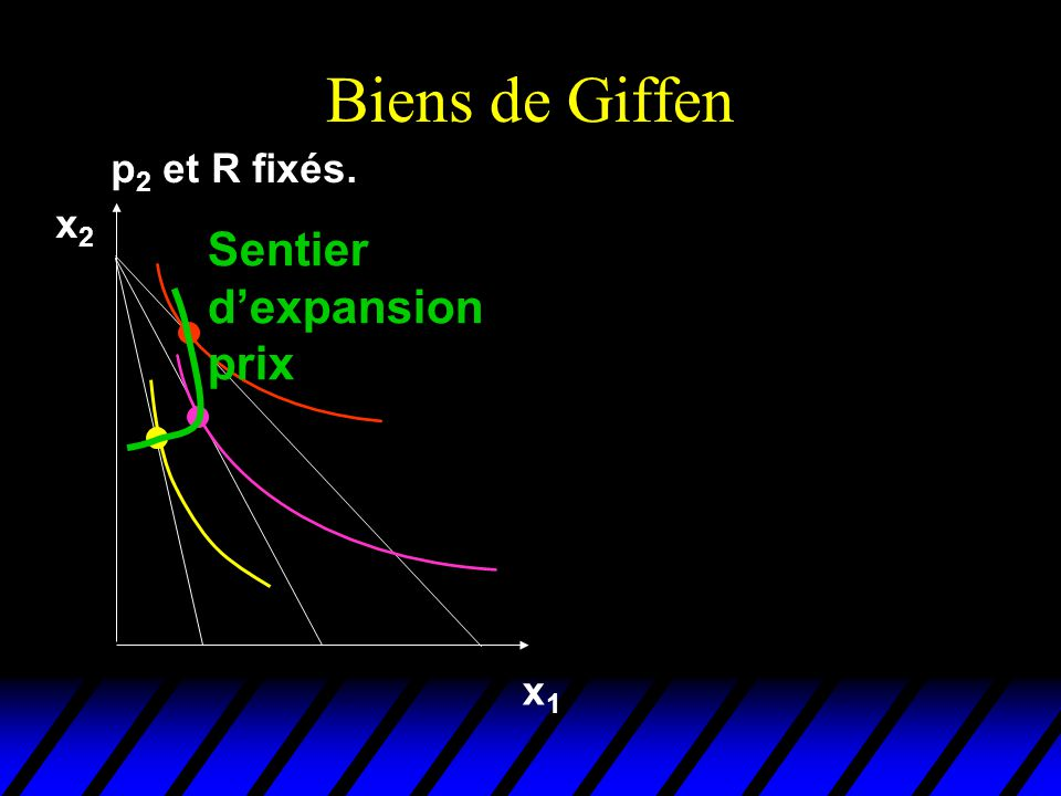 Biens de Giffen p2 et R fixés. x2 Sentier d'expansion prix x1
